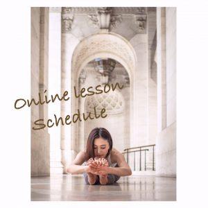 Online lesson schedule